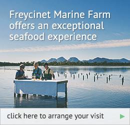 freycinet-marine-farm_1-6-2014_5 (1)