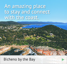 bicheno-by-the-bay_9-7-2014