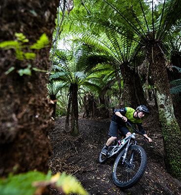 East Coast Tasmania - St Helens Mountain Biking